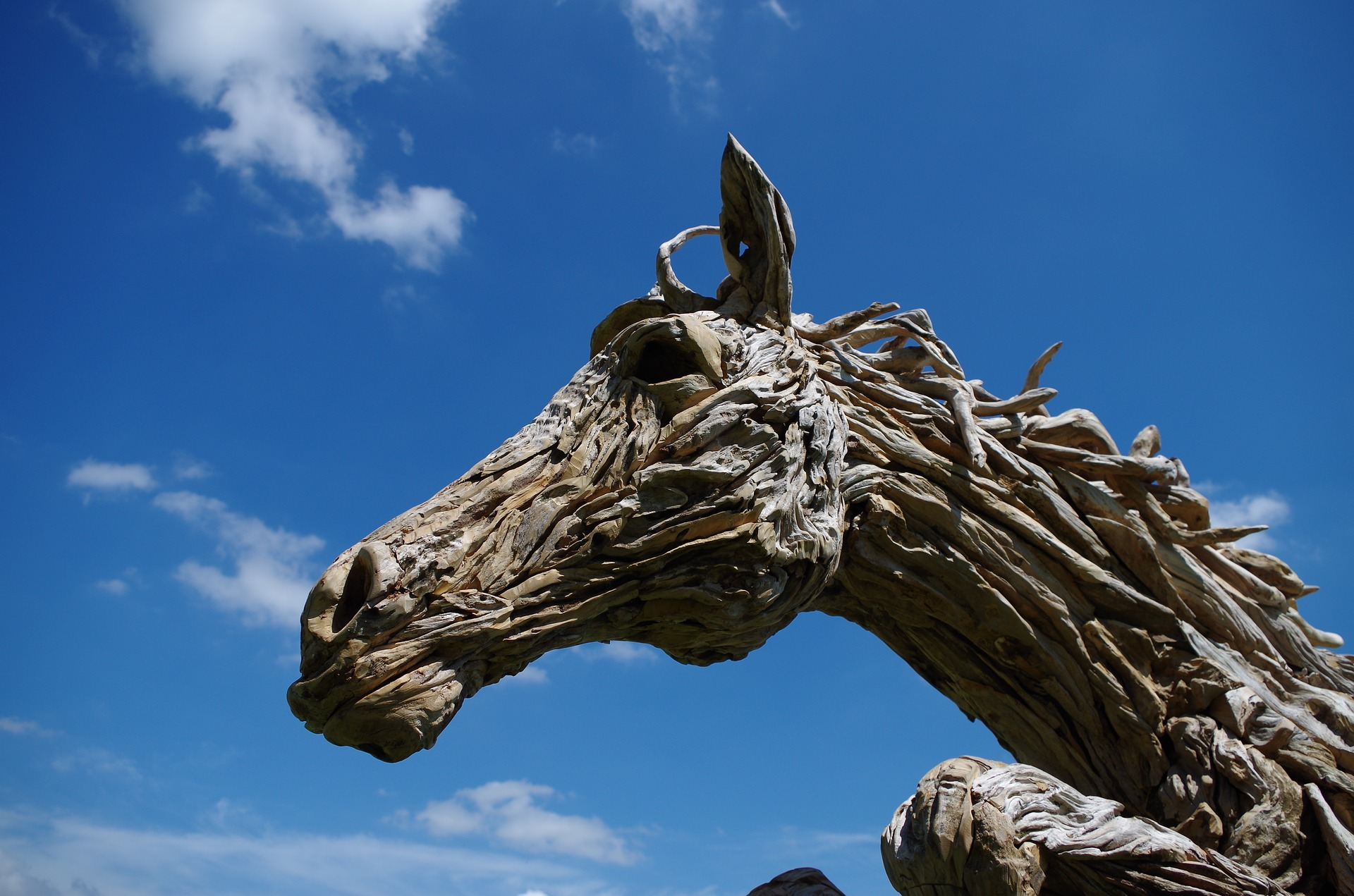 Horse Art made of Driftwood - My Favourite Beach for Beachcombing